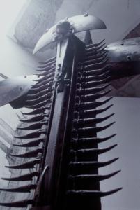 CRUZ DEL CÓNDOR (detalle), 1997-2002.